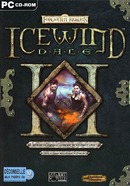 The video game Icewind Dale 1 on pc.